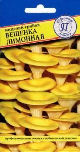 Грибы Вешенка лимонная 12 палочек