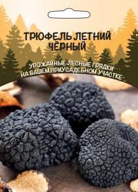 Грибы Трюфель Летний Черный