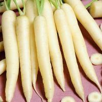 Морковь Вайт Сатин 0,5 гр.