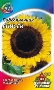 Подсолнечник Енисей 5 гр. металл