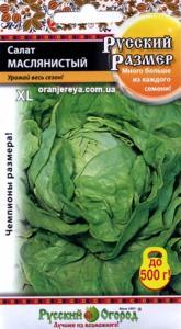 Салат Маслянистый Русский размер 0,5 гр. кочанный
