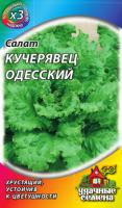Салат Одесский кучерявец 0,5 гр. металл