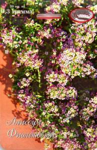 Алиссум Мускат фиолетовый Германия (20пак*0,3 гр.)