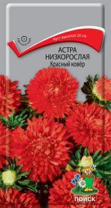 Астра Красный ковер низкорослая 0,2 гр.