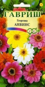 Георгина Анвинс 0,3 гр.