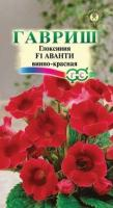 Глоксиния Аванти винно-красная 5 шт.