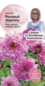 Космея Розовый Леденец 0,1 гр. (семена от Ганичкиной)