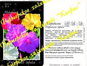 Мирабилис смесь Утренняя зорька (20пак*2 гр.)