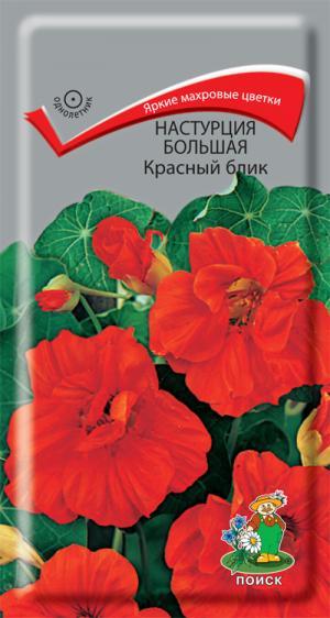 Настурция Красный блик 1 гр.
