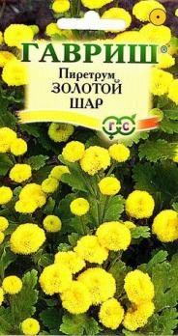 Пиретрум Золотой шар 0,01 гр.