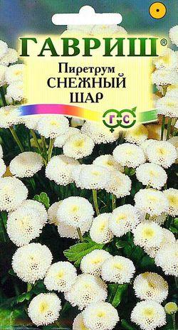 Пиретрум Снежный шар 0,01 гр.