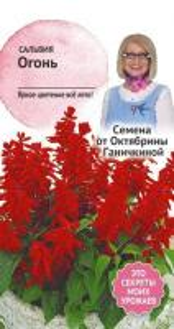 Сальвия Огонь 0,1 гр. (семена от Ганичкиной)