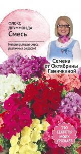 Флокс Друммонда смесь 0,1 гр. (семена от Ганичкиной)