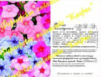 Флокс Калейдоскоп (20пак*0,3 гр.) Германия