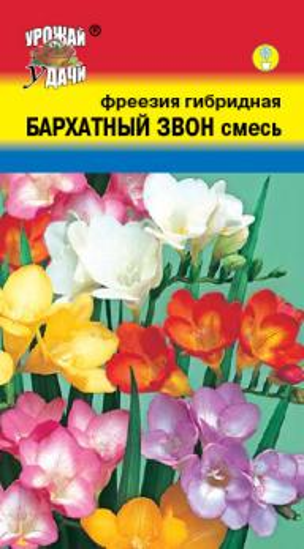 Фреезия Бархатный звон смесь 0,05 гр.