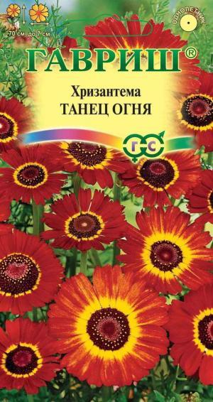Хризантема Танец огня 0,5 гр.