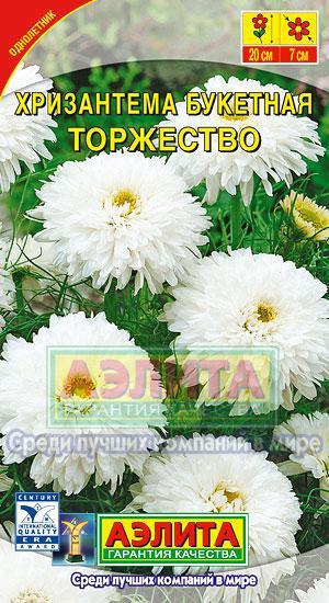Хризантема Торжество букетная 0,1 гр.