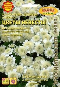 Хризантема Цветы невесты девичья 0,04 гр.