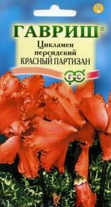 цикламен Красный партизан 3  шт.