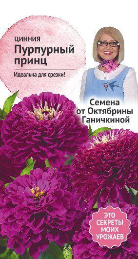 Цинния Пурпурный принц 0,2 гр. (семена от Ганичкиной)