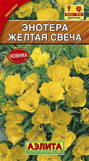 Энотера Желтая свеча 0,2 гр.