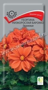 Георгина Барокко оранжевая низк. 0,1 гр.