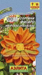 Георгина Фигаро Оранжевая 7 шт.
