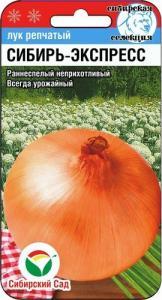 Лук Сибирь-Экспресс 1 гр.