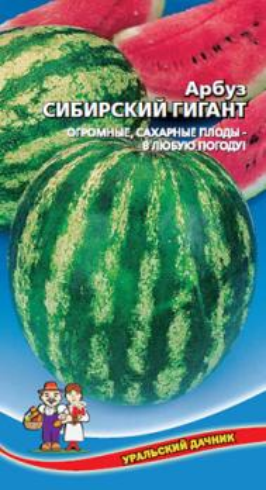 Арбуз Сибирский гигант 10шт