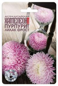 Астра китайская Хамелеон селект Пурпурит Лилак Фрост 40шт