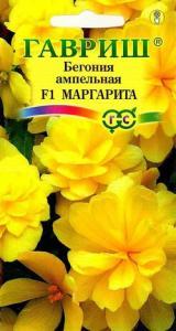 Бегония Маргарита амп. 4шт