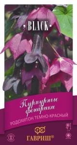 Родохитон Пурпурные фонарики 5шт